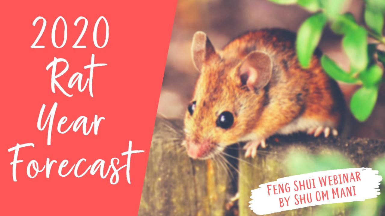 Rat Year Webinar